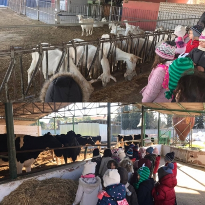 Küçük Şeyler Anaokulu Öğrencileri Çiftlik Gezisi'nde!